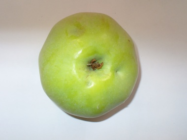 Apfelsorte Ontario